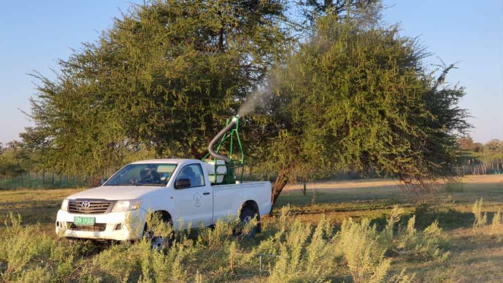 Government battle locusts N$20 million control combating devastating invasion