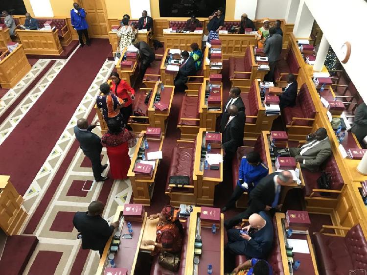 parliament debate Electoral Commission Namibia ECN Swapo