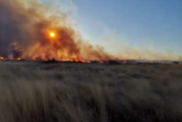 Community praised for controlling Witvlei fire