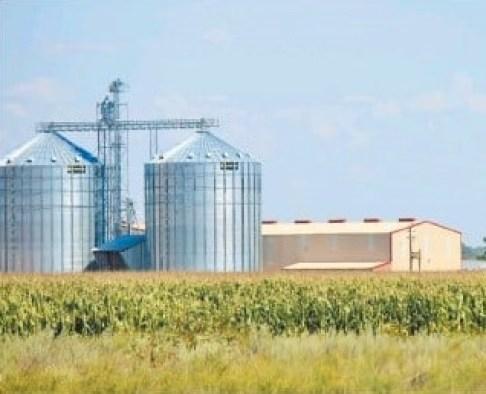 fertilizer supplier millions maize crop Green Scheme irrigation Kavango River highest bidder enterprise fertilizer