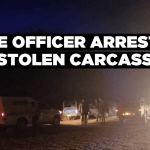 Police officer arrested with stolen carcasses