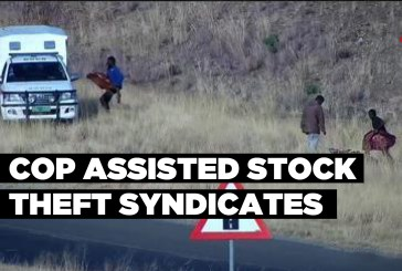 Cop assisted stock theft syndicates