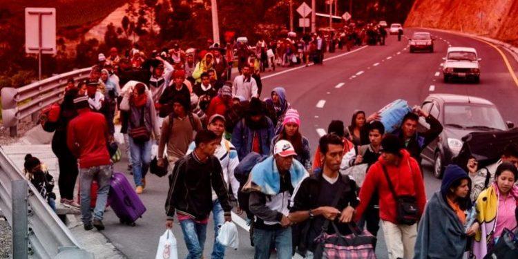 Denuncian que mafias ecuatorianas ofrecen pase ilegal a venezolanos en Perú