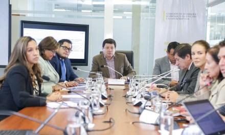 Comisión trabajará en tres proyectos de ley y avocará conocimiento de otras normativas