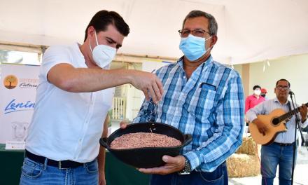 Dos nuevas variedades de arroz presentó el INIAP