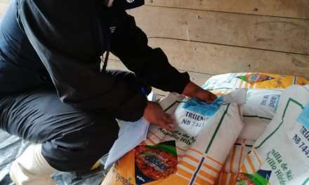 MAG realiza operativos de control para evitar venta de semilla adulterada