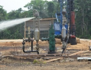 AGIP IDU WELL 3 SPILL SITE1_0