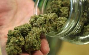 marijuana-poll-10222013-624x390