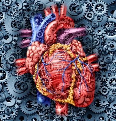 15491714-human-heart-health-medical-care-symbol-with-gears-and-cogs-connected-together-pumping-blood-represen[1]