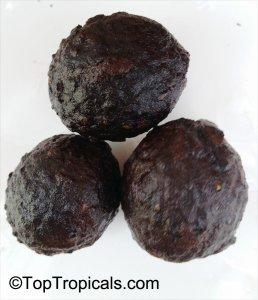 Gabon Nuts