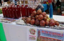 Impulsan agrotecnologías para en desarrollo comunitario en la Mixteca