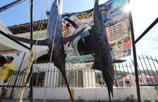 San Agustín conquista el Torneo de Pesca de Huatulco