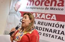 Un error darle candidatura al Senado a Nancy Ortiz, dice Secretario de Morena