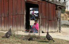 Fracasa cruzada contra el hambre en Oaxaca