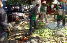 Todo listo para la Feria del elote de San Pedro Yodoyuxi