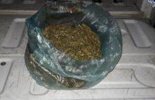 Asegurados por traer 300 gramos de mariguana