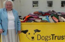 Abuelita tejió 450 mantas y suéteres para regalarlos a los perros de un refugio