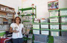 90 por ciento de plantas medicinales en riesgo de desaparecer por megaproyectos en el Istmo