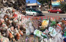 Casi 2 toneladas de despensas tiradas a la basura