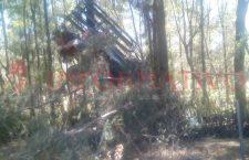 Le fallan los frenos a camioneta y se impacta contra vivero, dos lesionados