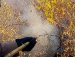 Bombeiros controlam incêndio florestal em Assú