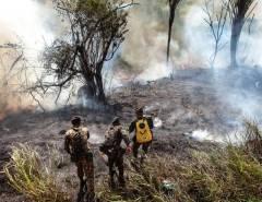 Comitiva de nove ministros viaja à Amazônia para reuniões com governadores