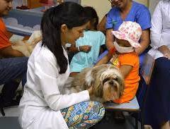 Câmara aprova projeto que permite visita de animais em hospitais