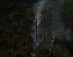 Avanço: Amazônia tem menor número de queimadas em outubro desde 1998