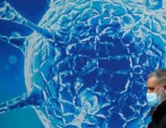 Dengue pode fornecer imunidade contra a covid-19, diz estudo