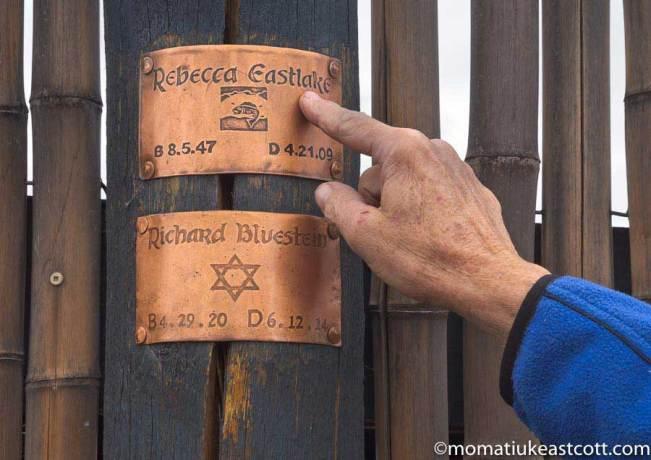 Photo credit: momatiukeastcott.com (copyright)