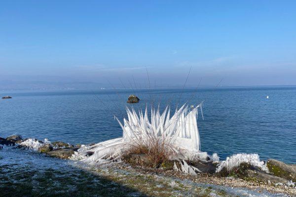 Sculptures glacées au bord du lac