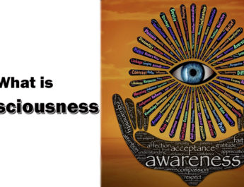 What is consciousness