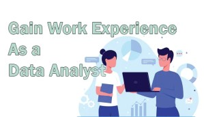 Gain Work Experience as a Data Analyst