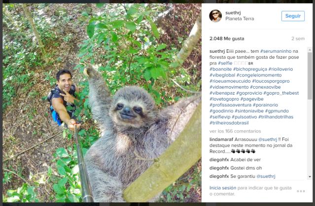A famous sloth selfie