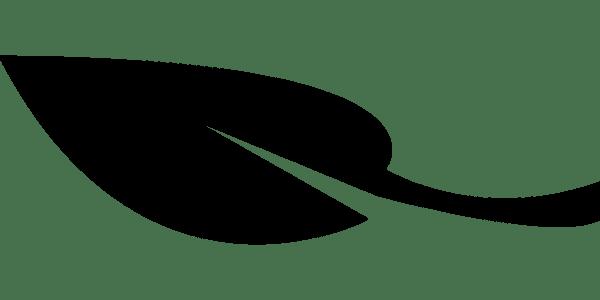 Etica e Bioetica: le questioni sul tappeto