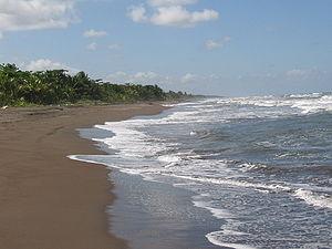 Beach at Tortuguero National Park