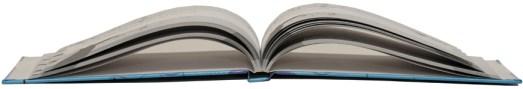 Gift Idea: Book of Tweets 1