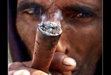 Photo of Are Attitudes to Marijuana Changing?