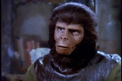 Night at the Movies with Eric: Rise of the Planet of the Apes 2