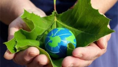 Photo of Learn To Live with Responsibility: Go Green