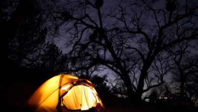 Photo of Urban Camping: Get the Traditional Experience in your Backyard!