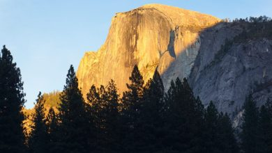 Photo of Yosemite Nature Notes: Granite