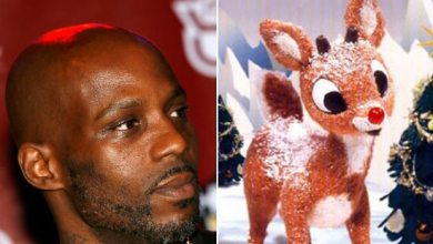 Photo of Rudolph, Meet DMX