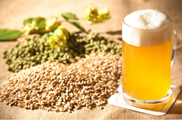 Photo of Essential Supplies for Home Brewing Your Own Beer