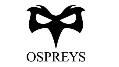 Photo of Woman appointed to the board at Ospreys Rugby club