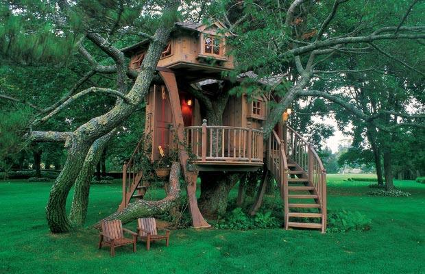 The Joys Of Building A Backyard Treehouse Infotainment News