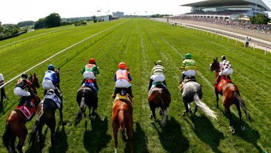Photo of Celebrities Riding High On Racehorse Success