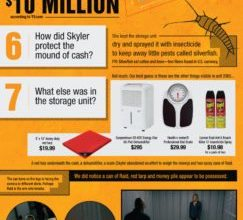 Photo of Burning Questions About Storage Unit #2065 [Infographic]