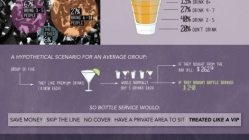 How To Live Large: What's It Like To Be A VIP? [Infographic] 5