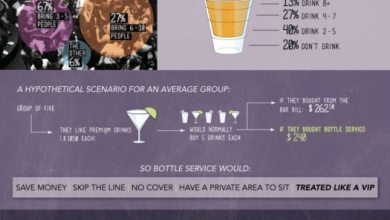 Photo of How To Live Large: What's It Like To Be A VIP? [Infographic]